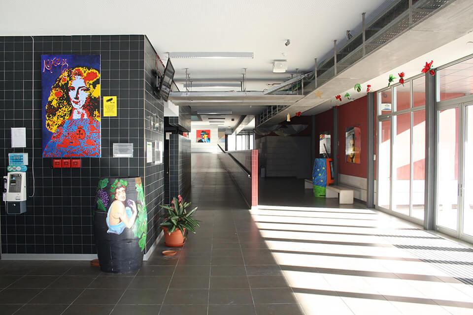 EscolaInesCastro3